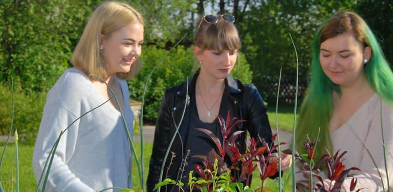 3 Auszubildende im Garten